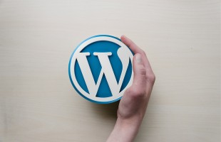 Quali sono i migliori plugin per WordPress?